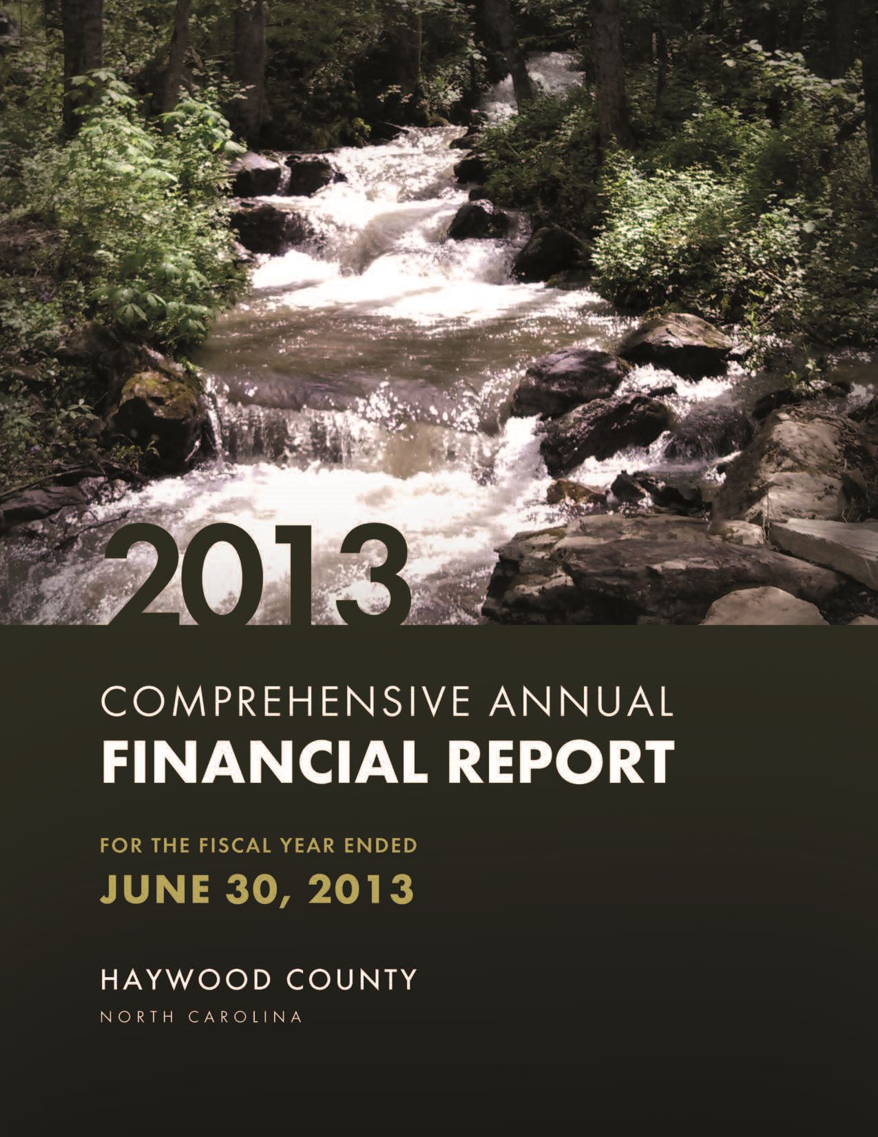 Comprehensive Annual Financial Report 2013 Cover Opens in new window