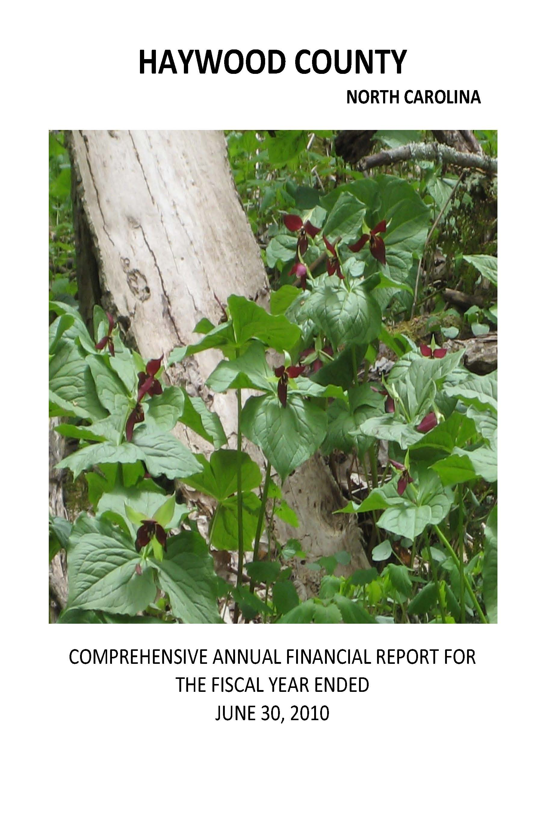 Comprehensive Annual Financial Report 2010 Cover